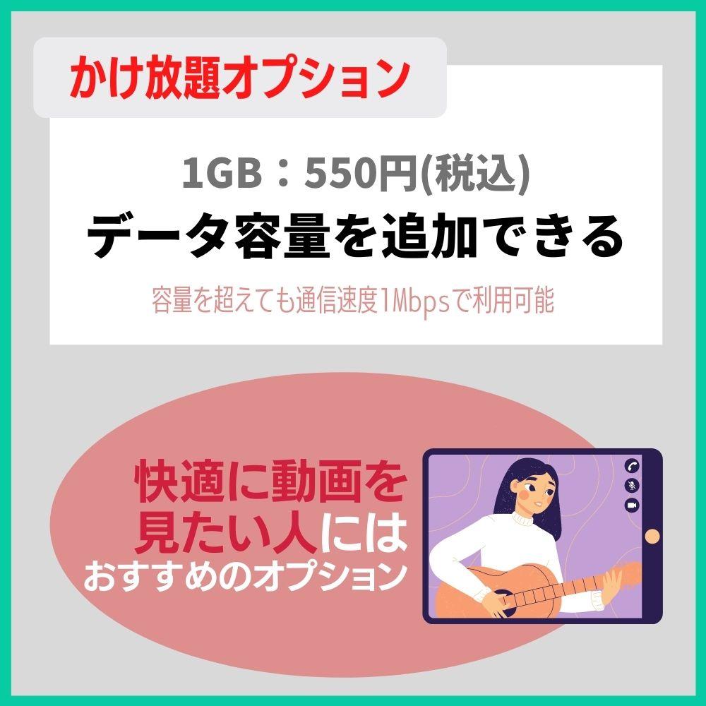 1GB追加オプション